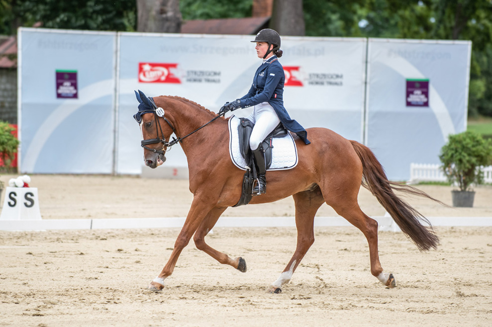 Nowozelandczycy liderami konkursu LOTTO Strzegom Horse Trials [FOTO+FILM]