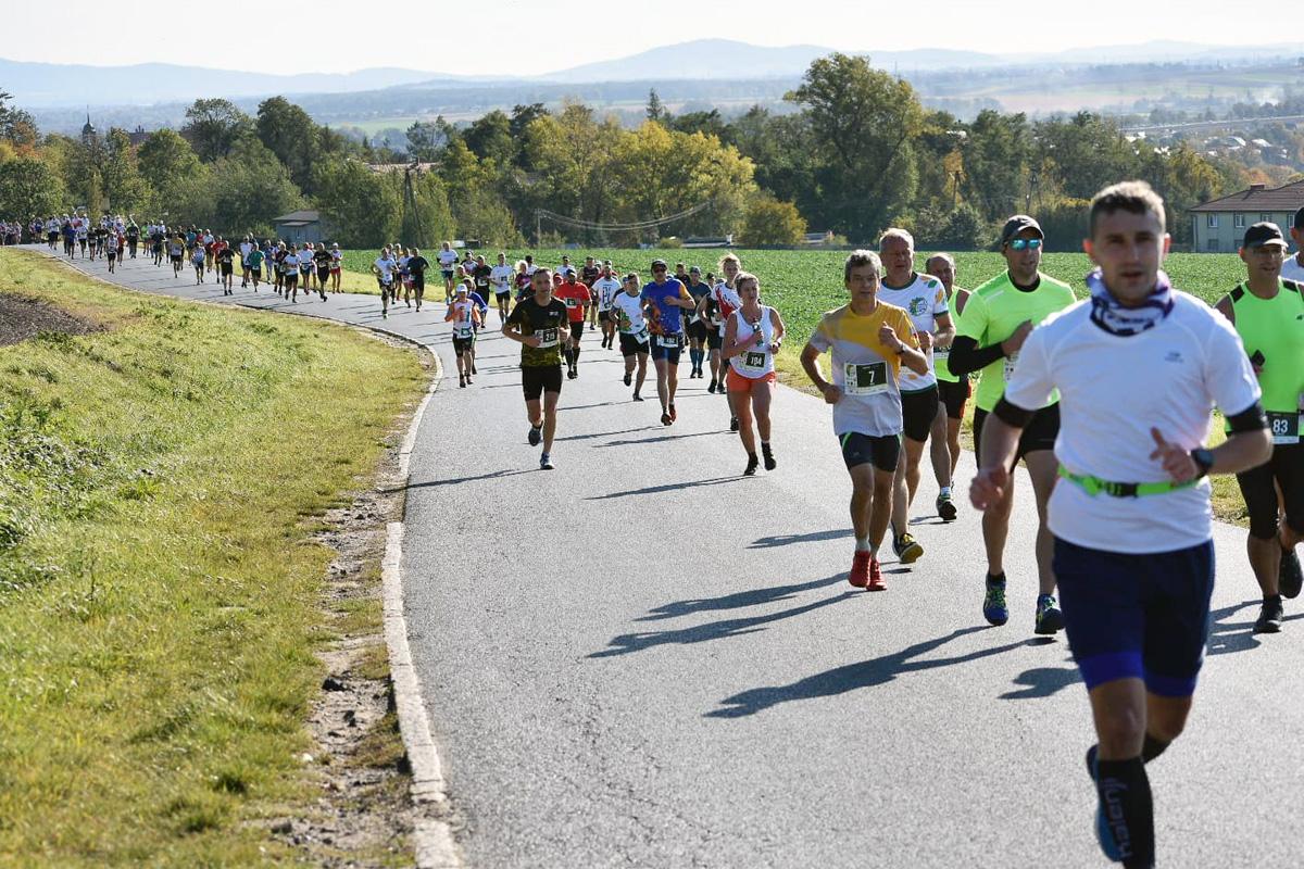 Aryzta Półmaraton w Strzegomiu z 388 uczestnikami [FOTO]