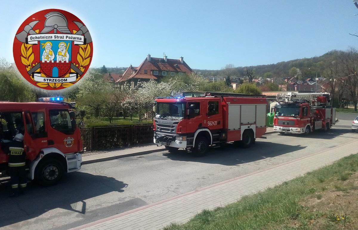 Pracowity tydzień strażaków z OSP Strzegom [FOTO]